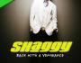 L.I.M.E. Interview: Q&A With Reggae ArtistShaggy